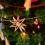 Kerstmarkt en eindejaarsvuurwerk afgelast in Antwerpen